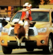 Longhorn Photos - California Rodeo Queen 2010 by Gus McCrea