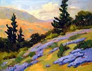 Plein Air Painting Posters - California Slope With Lupine Poster by Susan F Greaves