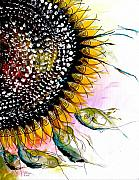 Sunflower Art Posters - California Sunflower Poster by J Vincent Scarpace