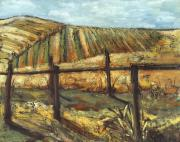 Susan Adame - California Vineyard