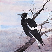 Carol Mclagan Art - Call of the Magpie by Carol McLagan