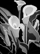 Lillies Painting Prints - Calla Lilies BW Print by Angelina Vick