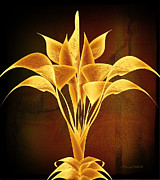 Lacy Fractal Prints - Calla Lily Abstract-v4 Print by Anne Lacy