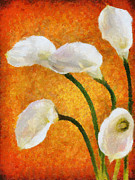 Calla Paintings - Calla Lily II by Jai Johnson