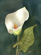 Leona Jones Posters - Calla Lily Poster by Leona Jones