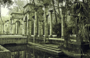 Fronds Prints - Calle Grande Ruins Print by DigiArt Diaries by Vicky Browning