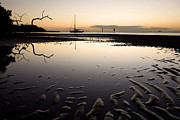 Tidal Pool Framed Prints - Calm Harbor at Dusk Framed Print by Matt Tilghman