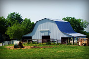Farm Photos - Calvin Road Barn by Cricket Hackmann