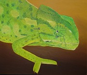 Chameleon Paintings - Camaleon by Jose Maria Noble