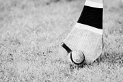 Ball Game Photos - Caman And Sliothar Hurling Stick And Ball by Joe Fox