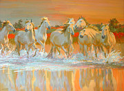 White Horses Painting Framed Prints - Camargue  Framed Print by William Ireland
