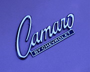 Name Prints - Camaro Print by Robert Harmon