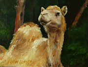 Roger Originals - Camel by Kathleen Hebert
