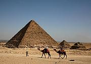 Camels Photos - Camel Ride at the Pyramids by Donna Corless