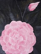 Camelia Print by Rhonda Lee