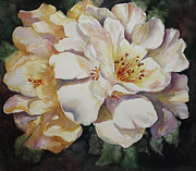 Roxanne Tobaison - Camellias Golden Glow