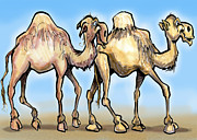 Funny Prints - Camels Print by Kevin Middleton