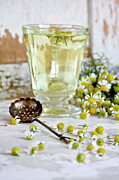 Chamomile Posters - Camomille Tea Poster by ©Tasty food and photography