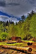 Logging Camp Prints - Camp 18 Railroad Car Print by David Patterson