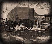 Heavy Horse Digital Art Posters - Camp Cook Wagon Poster by Garry Staranchuk