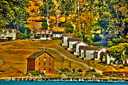 Barracks Prints - Camp Reynolds Angel Island Print by Cheryl Young