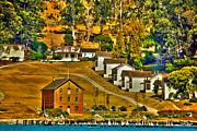 Camp Reynolds Angel Island Print by Cheryl Young
