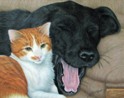 Retriever Prints Originals - Can We Watch Something Other Than Big Cat Diary by Beverly Fuqua
