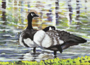 Waterfowl Paintings - Canada Geese At Ballard Park by James Leonard