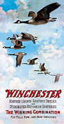 Waterfowl Painting Posters - Canada Geese In Flight Poster by C Everitt Johnson