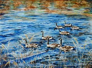 Wa Paintings - Canada geese by Zaira Dzhaubaeva