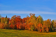 Colors Of Autumn Art - Canada in Colors by Aimelle