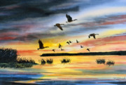 Waterfowl Painting Posters - Canadas at Sunset Poster by Raymond Edmonds