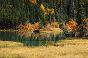 Canadian Rockies Photos - Canadian Autumn by Bob Christopher