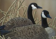Canadian Geese Paintings - Canadian Geese by Christine Swanson