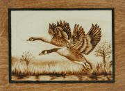 Canadian Geese Pyrography - Canadian Geese in Flight by Cate McCauley