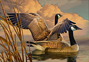 Geese Digital Art Posters - Canadian Geese Poster by Valerian Ruppert