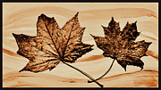Brown Tones Digital Art Framed Prints - Canadian Leaf Framed Print by Marsha Heiken