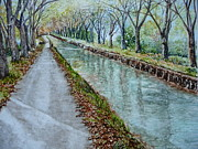Midi Framed Prints - Canal du Midi Framed Print by Claudia Rutherford