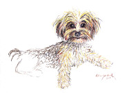 Yorkie Drawings - Canine Cutie by Deborah Willard