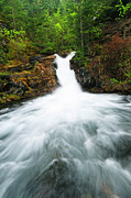 Alberta Water Falls Prints - Canmore Falls Print by Ginevre Smith