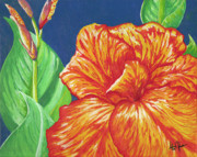 Canna Painting Framed Prints - Canna Flower Framed Print by Adam Johnson