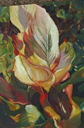 Canna Painting Posters - Canna in Light Poster by Elizabeth Taft