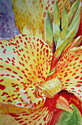 Canna Painting Framed Prints - Canna Indica Framed Print by Jennie Smallenbroek