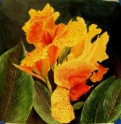 Canna Paintings - Canna Lilies by Vickie Voelz
