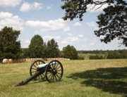 Manassas National Battlefield Park Photos - Cannon at Battery Heights at Manassas by William Kuta