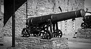 Irish Art - Cannon at Macroom Castle Ireland by Teresa Mucha