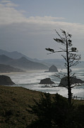 Haystack Framed Prints - Cannon Beach Framed Print by Timothy Johnson
