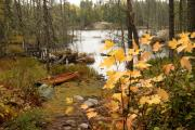 Boundary Waters Canoe Area Wilderness Photos - Canoe at Little Bass Lake by Larry Ricker