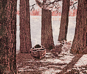 Fallen Leaf Photo Posters - Canoe in the Woods Poster by Cheryl Young