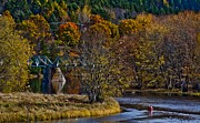 Roger Lewis Metal Prints - Canoer on the River in Autumn Metal Print by Roger Lewis
